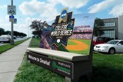 College World Series 2016